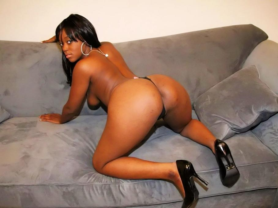 Free ebony booty sex
