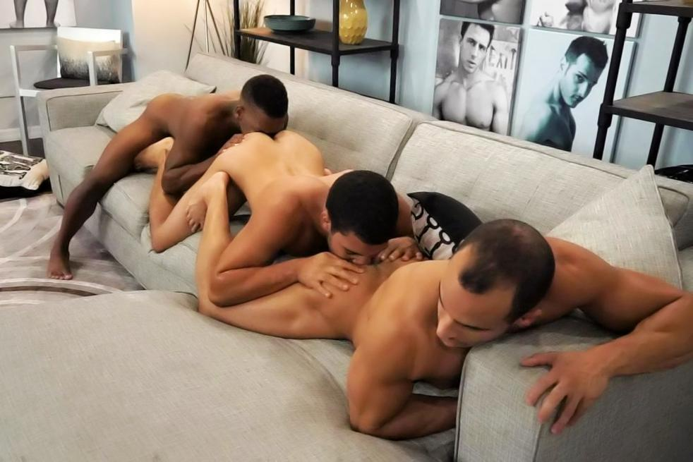 White and black gay sex