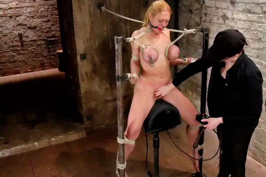 Free forced bi domination in jail